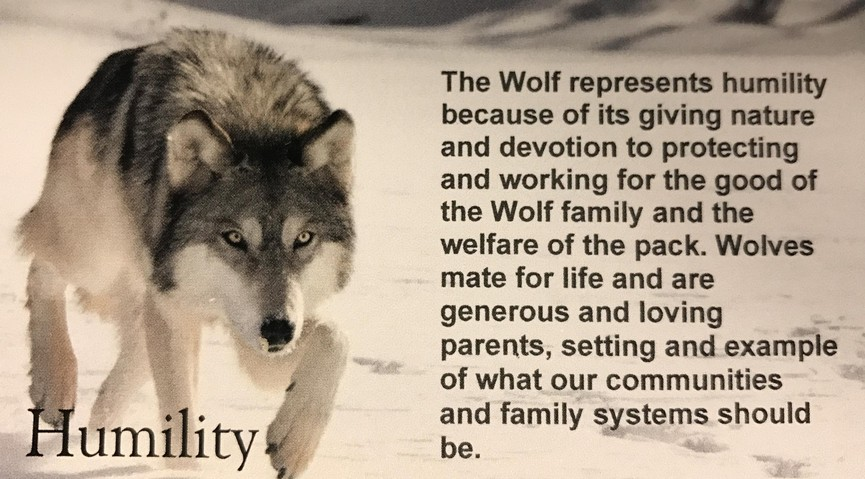 Humility Wolf - Sacred Teachings Poster