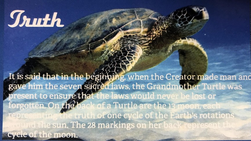Truth Turtle - Sacred Teachings poster