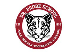 Dr. Probe MIPI Home Page
